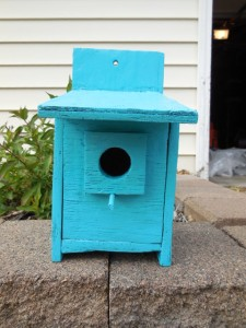 Bird House painted
