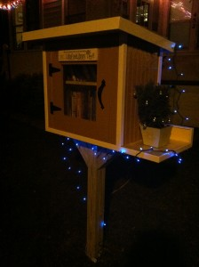 24. Little Free Library 2